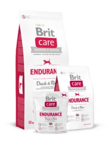 endurance_duckrice